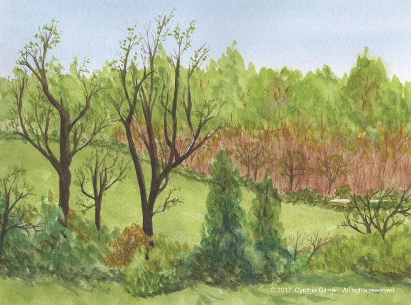 09d Springtime Field
