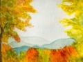 10g 6x6 Autumn