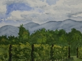 05c Afton-Mountain-Vineyard-6x6