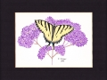15d Old Butterflies 3 sm