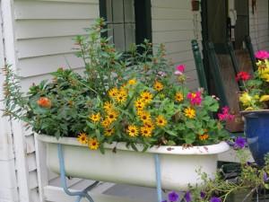 Tub of Flowers